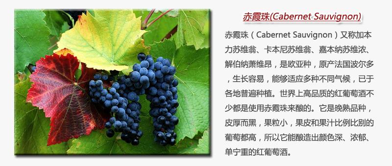chixiazhu.jpg