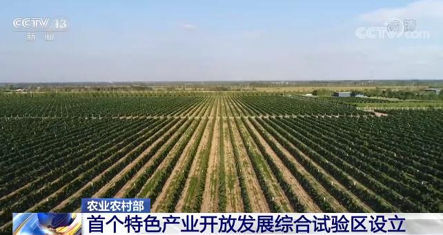 农业农村部:全国首个特色产业开放发展综合试验区在宁夏设立