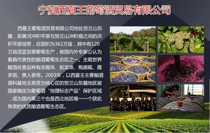 xixiawang201511004.png