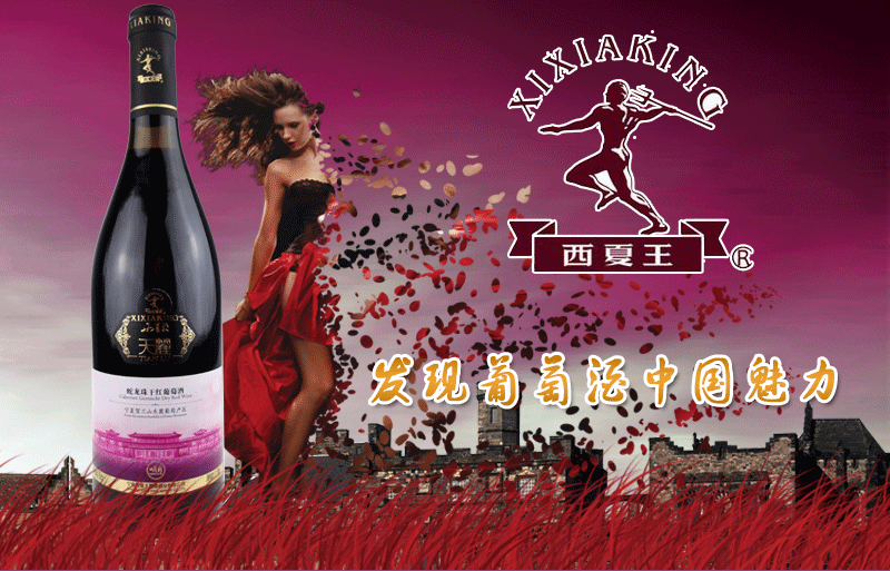 xixiawang2016022301.png