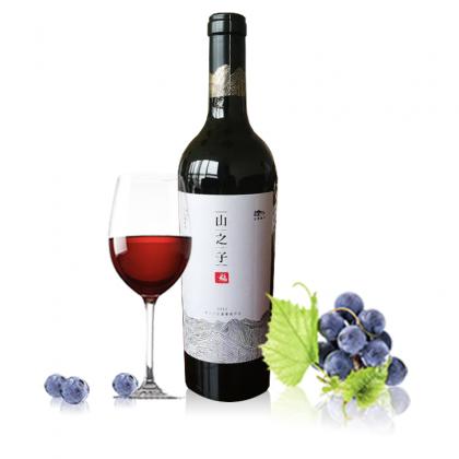 志辉源石 山之子赤霞珠干红葡萄酒