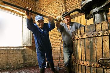 贺兰山东麓葡萄酒与京东达成战略合作 品牌扩张渐入佳境